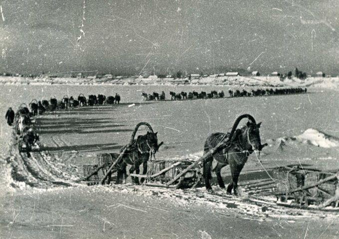Великая Отечественная. Фото Михаила Силенко