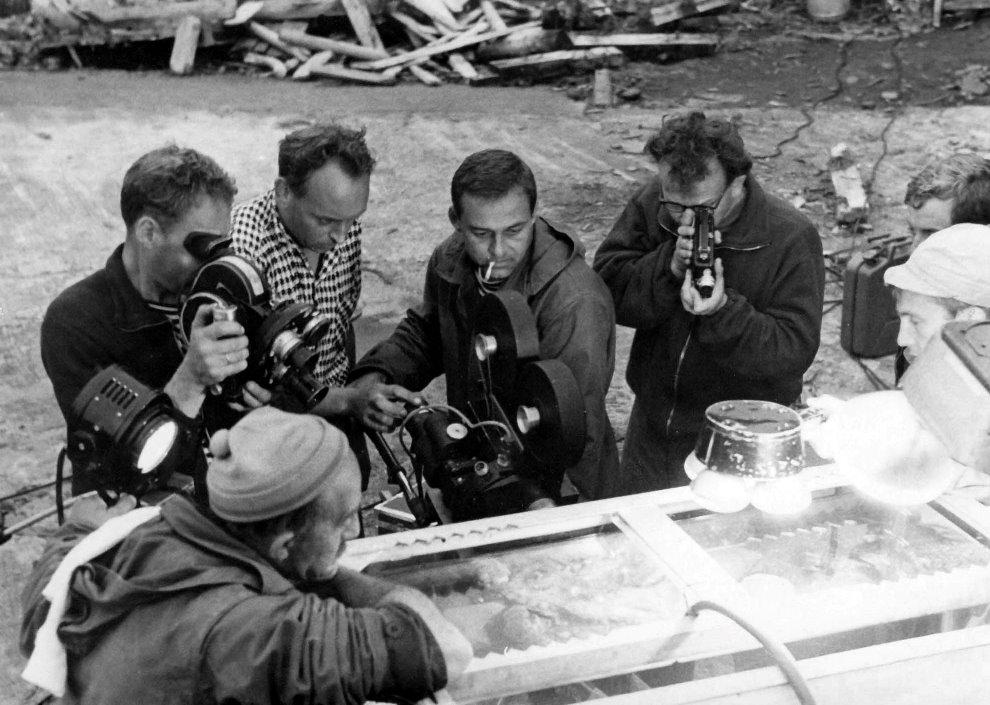 Экспонат #16. Киносъемка осьминога. Дальний Восток. 1962 - 1963 гг.