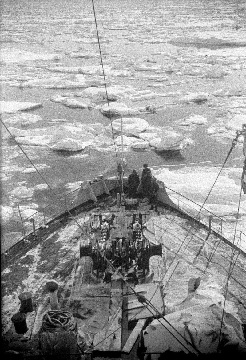 Экспонат #42. «Челюскин». 1933 год