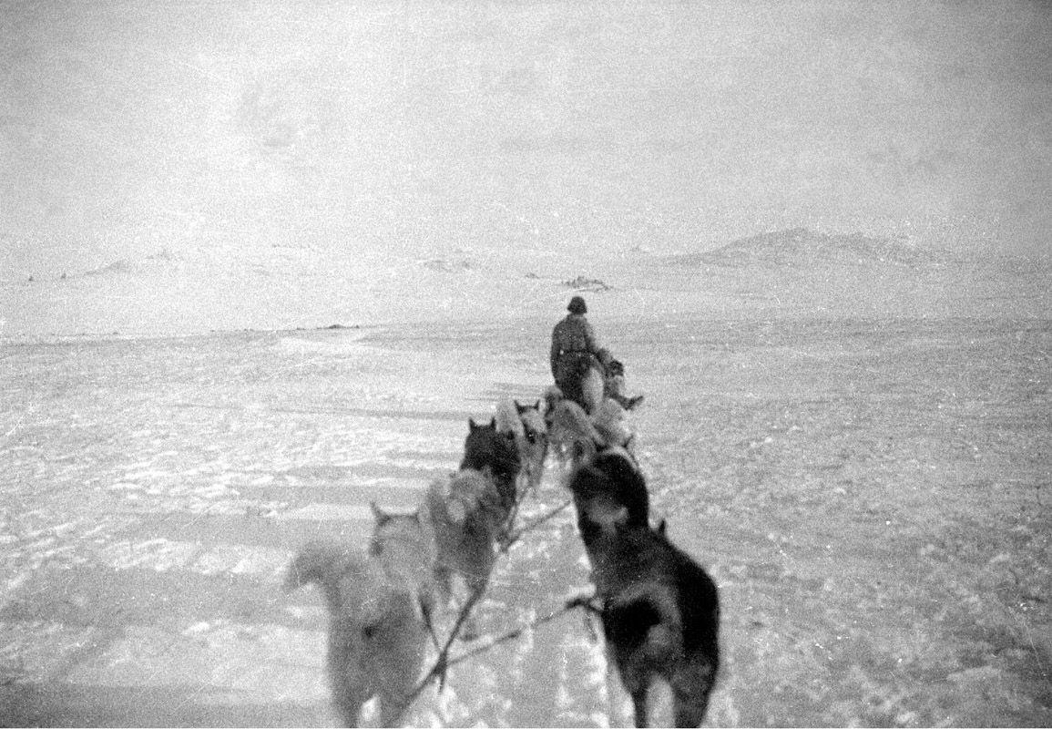 Экспонат #53. Отряд с «Челюскина» отправляется на материк. 1933 год
