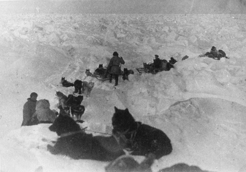 Экспонат #54. «Собачий переход». 1933 год