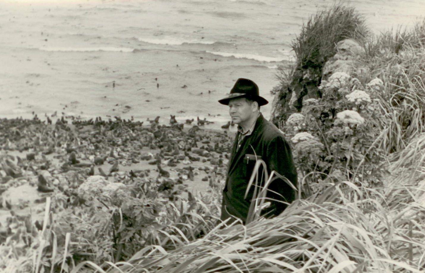 Курилы. Остров котиков. 1953 год