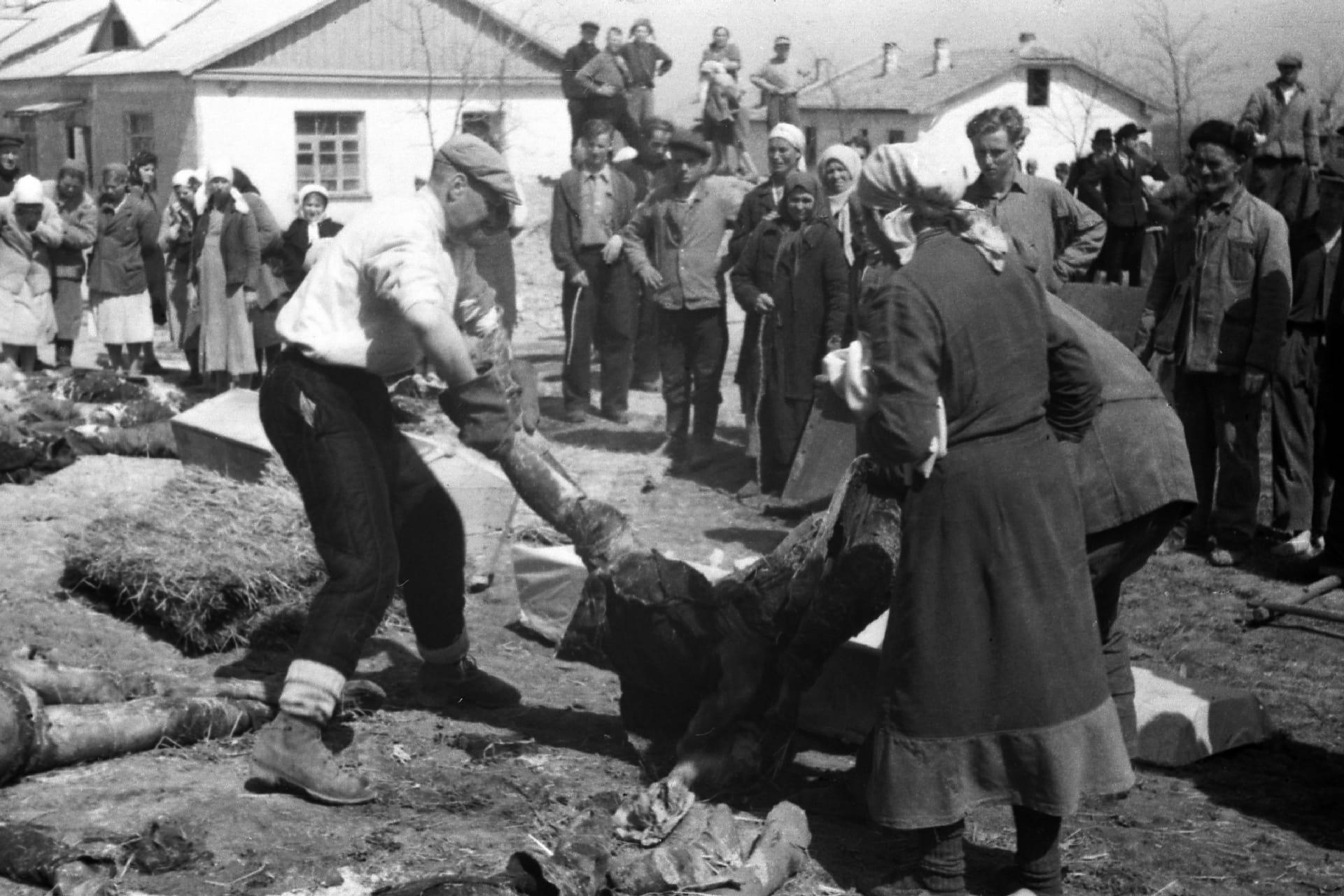 Экспонат #53. В Совхозе «Красный».21–23 апреля 1944 года